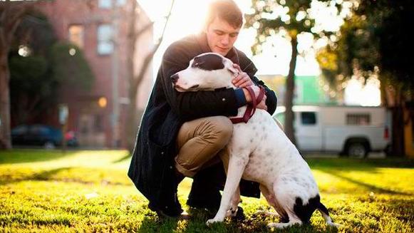 Tus emociones y tu perro