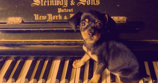 Piano Musica