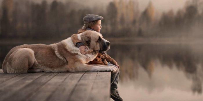 Buenas Prácticas Para Ti Y Tu Perro