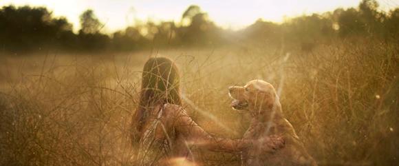 En los perros, confiamos
