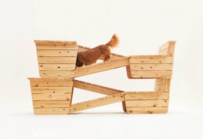 arquitectura_canina