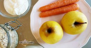 pastel-para-perros-receta-manzana-zanahoria
