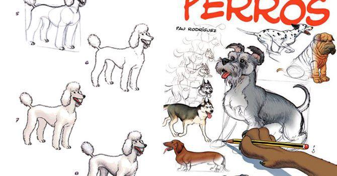 Dibujo Pinto Perros
