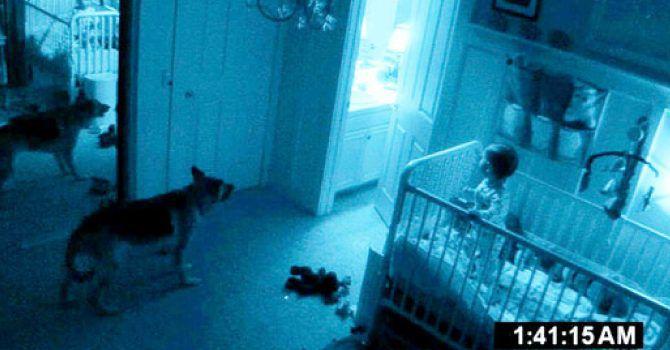 Perros Paranormales