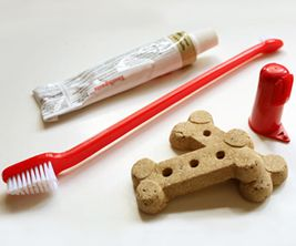 dental_products