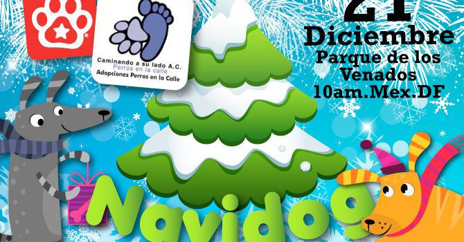 Evento: Navidog 2014