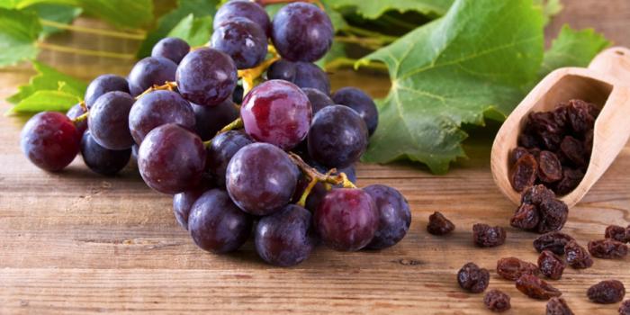 Frutas Y Vegetales Que Pueden Intoxicar A Tu Perro