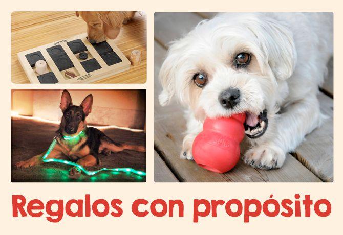 Regalos útiles para tu Super Cachorro