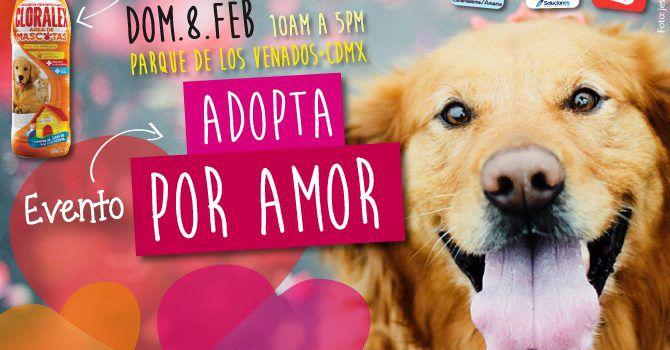 Evento: Adopta Por Amor