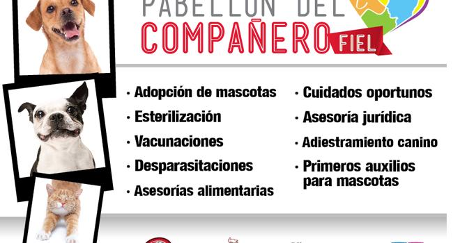Pabellón Compañero Fiel En Guadalajara