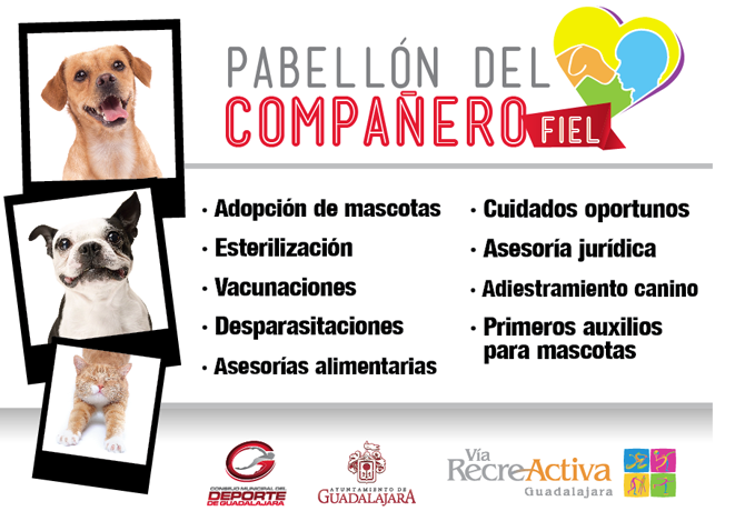pabellon_recreativa