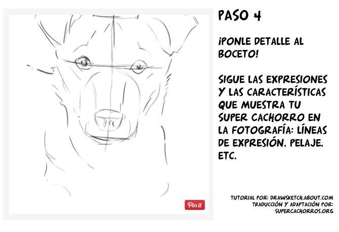 Boceto para dibujar perros - Super Cachorros