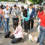 EstacionConsultaMarzo-SuperCachorros2015-24