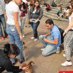 EstacionConsultaMarzo-SuperCachorros2015-33