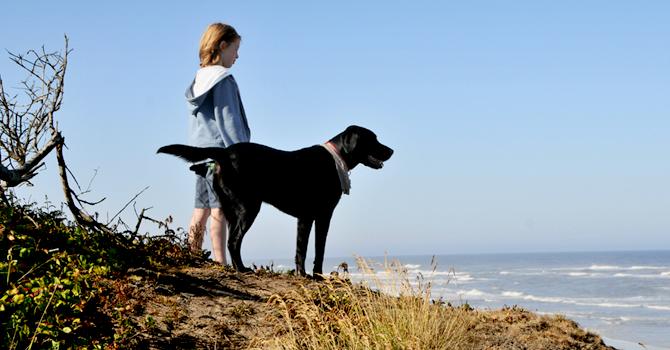 Los Perros Pueden Confiar En Nosotros
