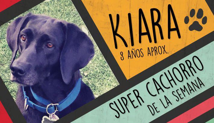 kiara_cachorreando