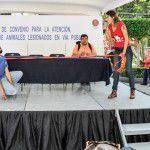 FundacionSuperCachorros-22