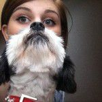 perfectly-timed-dog-photos-37