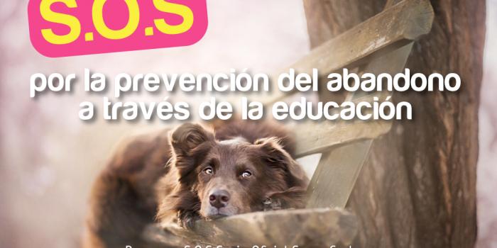 Membresía Super Cachorros