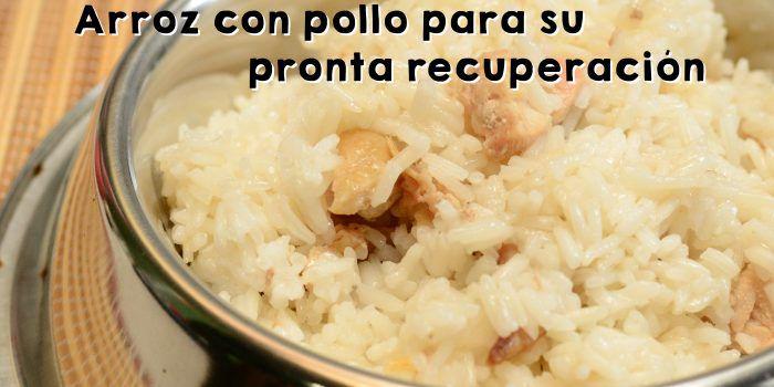 Receta dieta pollo con arroz