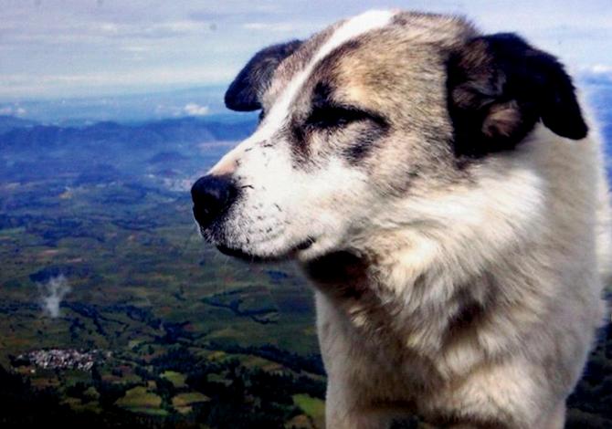 Citla, el vigía del Pico de Orizaba