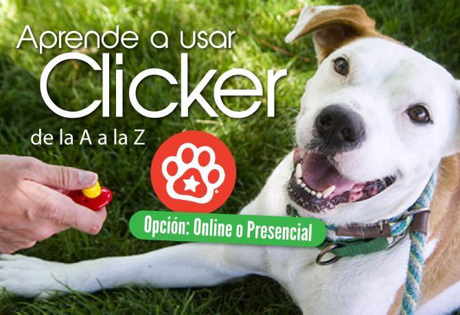Clicker-2016A