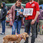 ConsultaSuperCachorrosDIC2015-11
