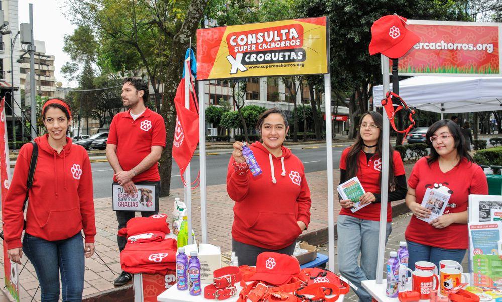 ConsultaSuperCachorrosDIC2015 14
