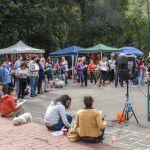 ConsultaSuperCachorrosDIC2015-16