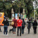 ConsultaSuperCachorrosDIC2015-2