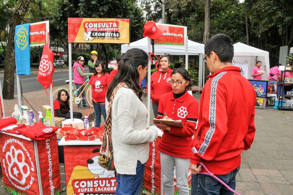 ConsultaSuperCachorrosDIC2015 38