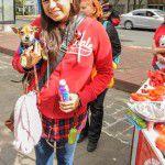 ConsultaSuperCachorrosDIC2015-39