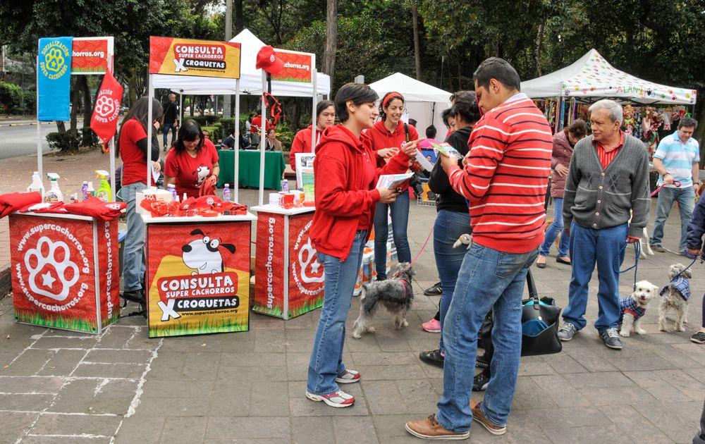 ConsultaSuperCachorrosDIC2015 42