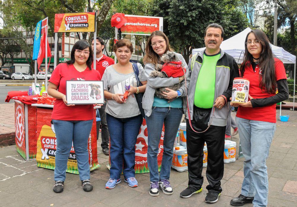 ConsultaSuperCachorrosDIC2015 45