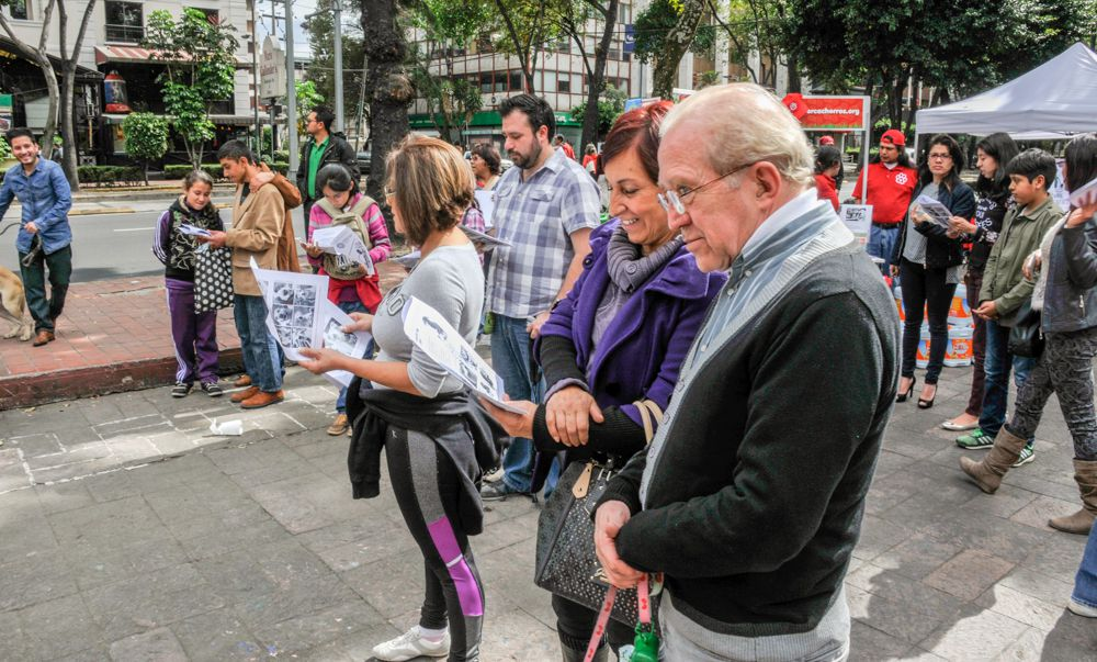 ConsultaSuperCachorrosDIC2015 47
