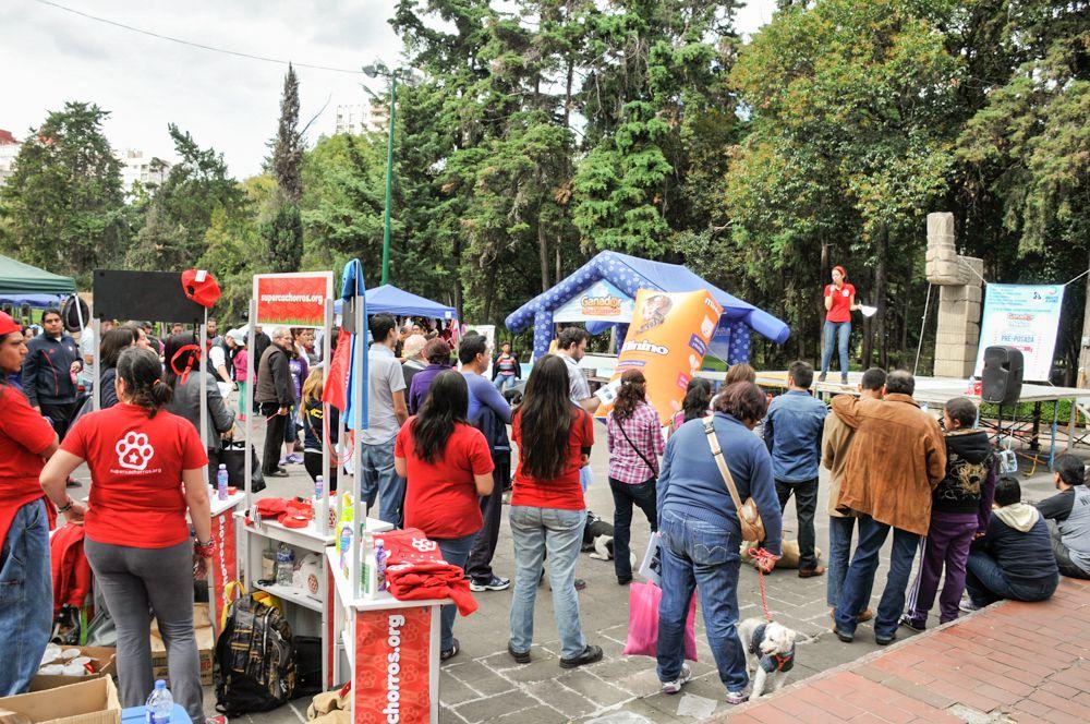 ConsultaSuperCachorrosDIC2015 49