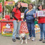ConsultaSuperCachorrosDIC2015-54