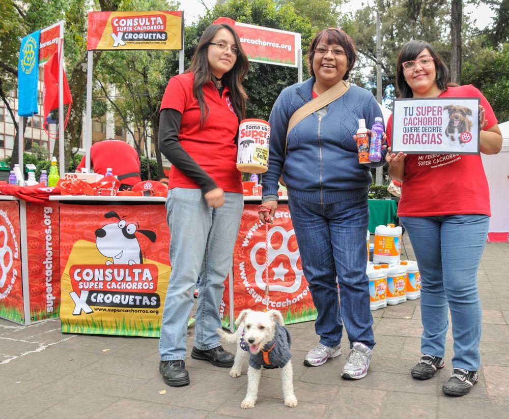 ConsultaSuperCachorrosDIC2015 54