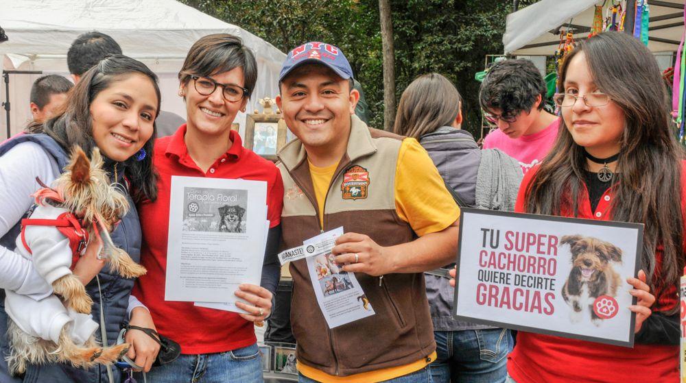 ConsultaSuperCachorrosDIC2015 56