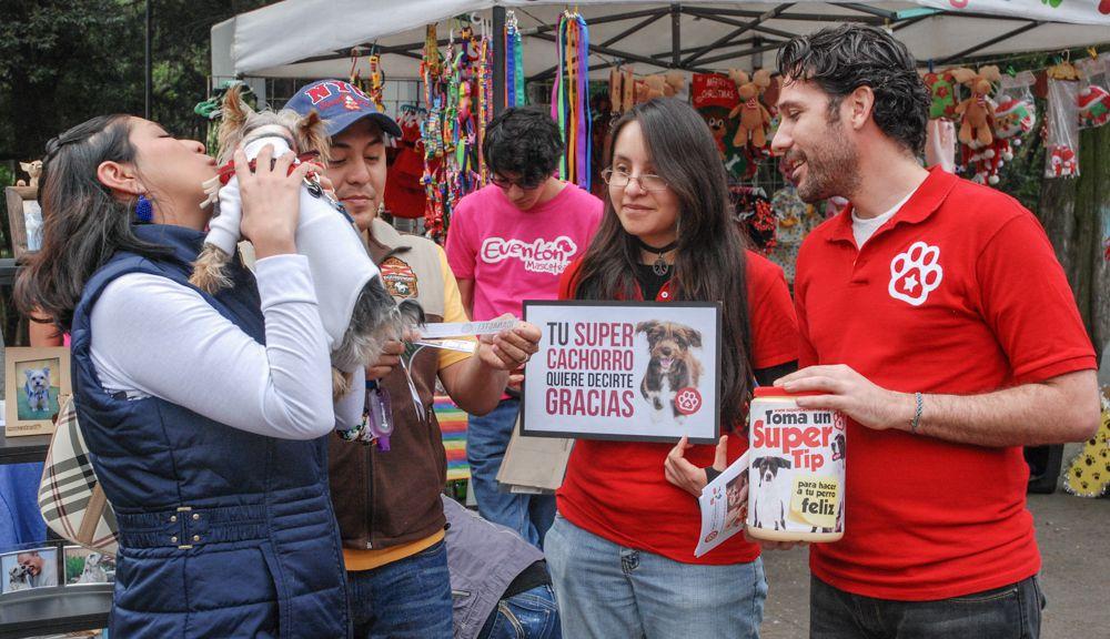 ConsultaSuperCachorrosDIC2015 6