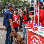 ConsultaSuperCachorrosDIC2015-7