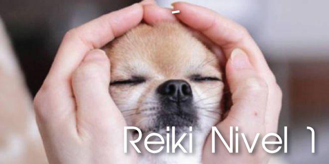 ReikiI