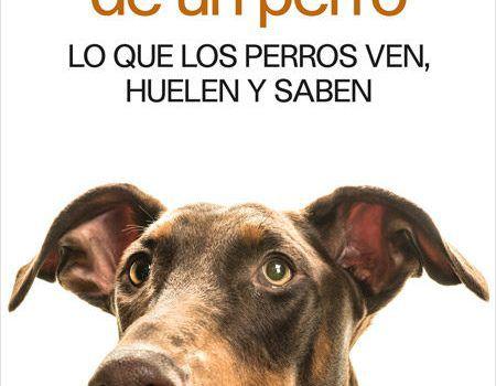Mente Perro