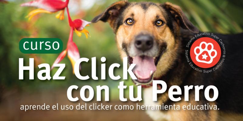 ImagenClicker