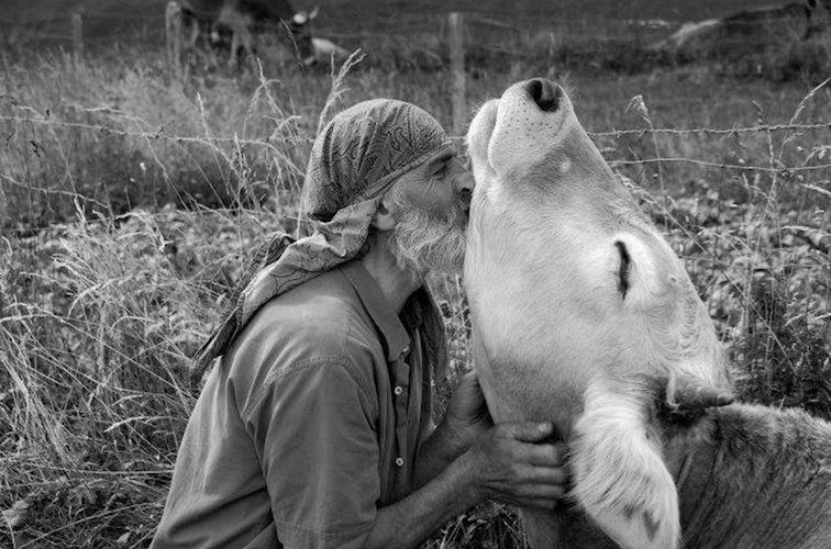 La comunicación telepática con animales, ¿es posible?